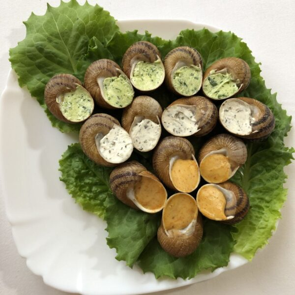 escargot with snail meat assorted